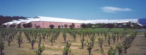 Clos-Du-Bois Winery